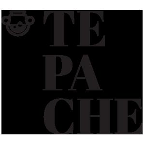 Tepache Lab
